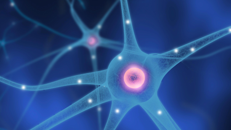 nerve-neuron-bg